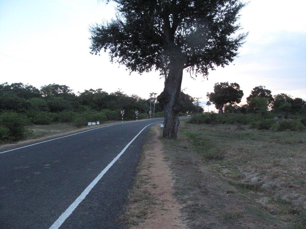 Sri Lankan outstation roads